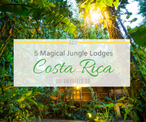 Costa Rica Jungle Lodges