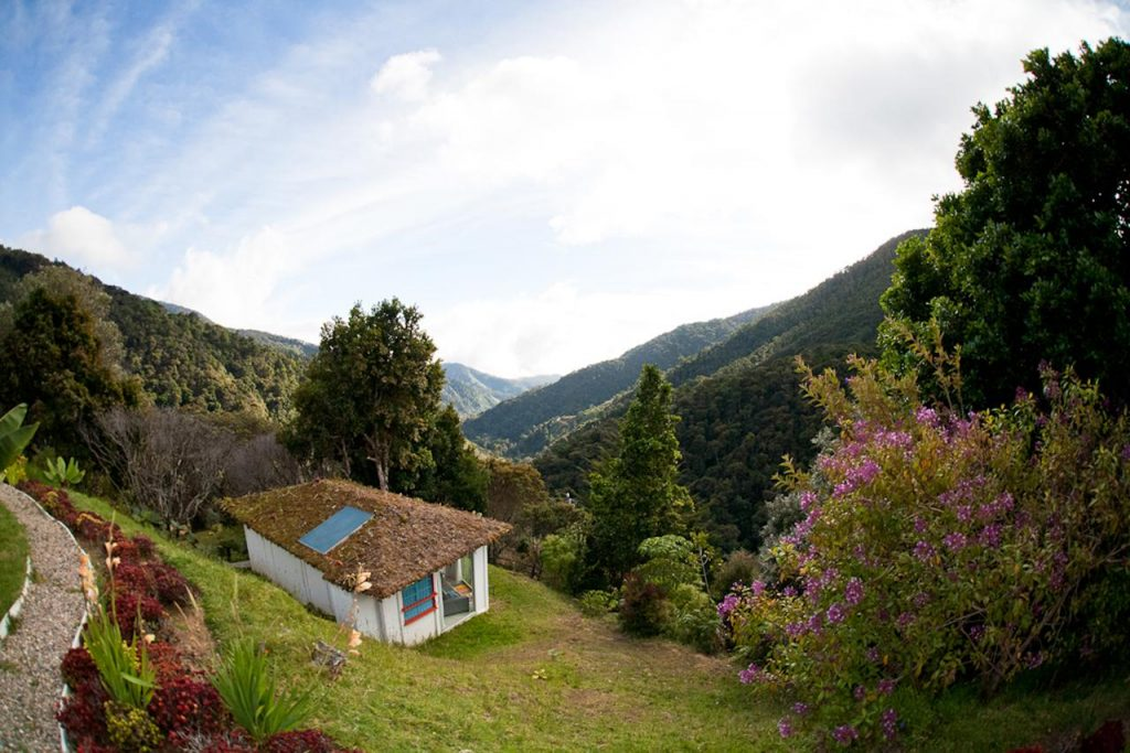 Dantica Cloud Forest Lodge​