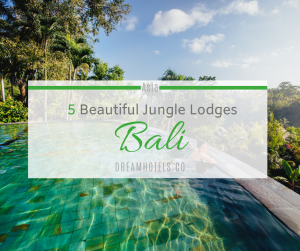Luxury Jungle Lodges Bali