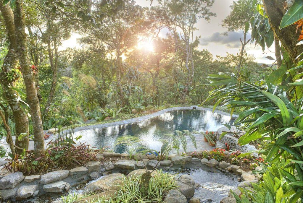Monteverde Lodge and Gardens Montteverde