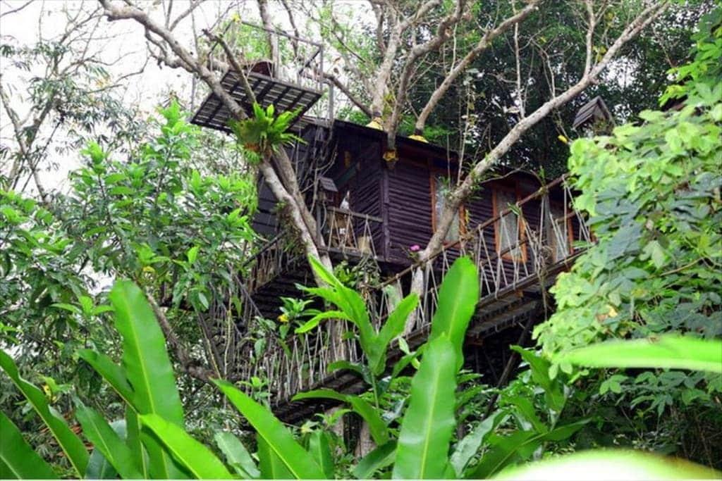 Khao Sok TreeHouse