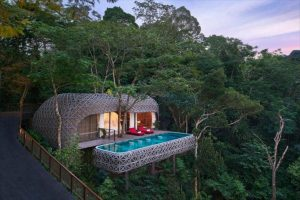 Top 9 Spectacular Treehouse Villas In Thailand