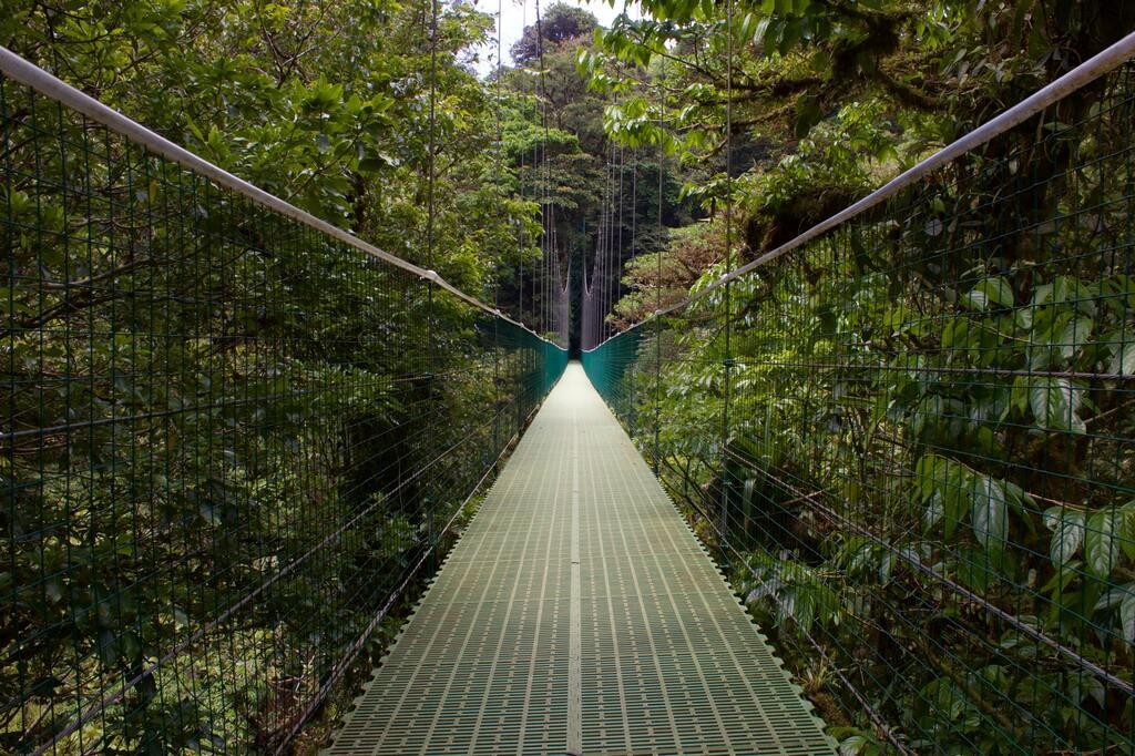 costa-rica-suspension-bridge