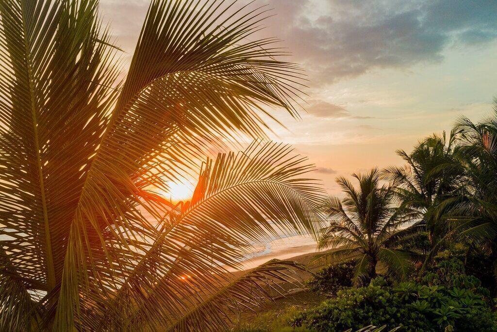 8 Best Costa Rica Tree House Resorts (Villas|Lodges|Hotels)